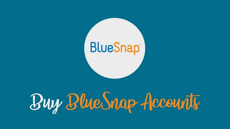 Buy BlueSnap Accounts